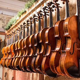 Needing Musicians by Ken Osborn - Artistic Objects Musical Instruments ( music, musical instrument, violin, creative, alignments, brown )