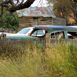 When Towns Fail by Jamie Boyce - Transportation Automobiles ( car, automobile, ghost town, south dakota, rusty, rust, abandoned,  )