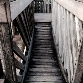 Wooden bridge  by David Ohler - Buildings & Architecture Bridges & Suspended Structures