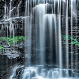Falls by Jeb Buchman - Landscapes Waterscapes ( water, waterfalls, waterscape, falls, rocks,  )