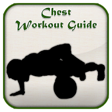 Chest Workout Guide