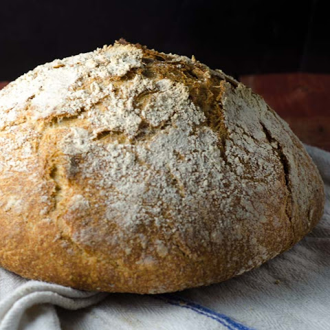 Whole Grain, No-Knead Sourdough Bread