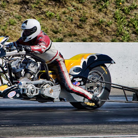 7.36 by Jerry Cahill - Sports & Fitness Other Sports ( drag bike, harley drag racing, nitro )