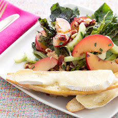 Rose Romaine & Painted Oak Lettuce Salad with Plums, Cucumber & Toasted Brie Baguettes