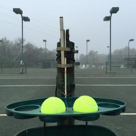 Yellow balls by Thomas Polk - Sports & Fitness Tennis ( clay, flordia, fog, morning, tennis )