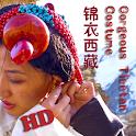 Gorgeous Tibetan Costume icon