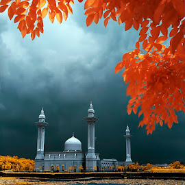 mosque in infrared by Encik Abdul Hadi - Buildings & Architecture Places of Worship