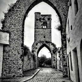 Return to The Abbey Drogheda by Gary L'Estrange - Instagram & Mobile iPhone ( ireland, garylestrangephotography, hdr, drogheda, monastic, white, iphone, mary durso, old abbey, blackandwhite, monastery, black, abbey )