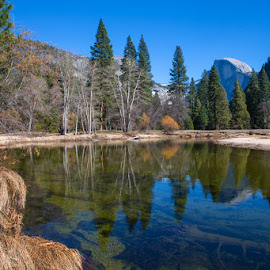 Merced River Reflections - Yosemite NP by Richard Duerksen - Landscapes Travel ( half dome, yosemite, reflections, merced river )