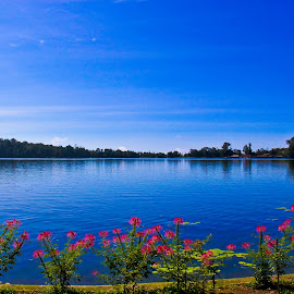 lake of Berantan Bali by Yoshua Viventius - Landscapes Travel ( water, blue sky, sky, sunny, lake, flower )
