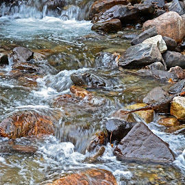 Streaming water by Angie Arnold - Nature Up Close Water ( water, stream, nature, rocks, river )
