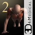iMuscle 2 APK Descargar