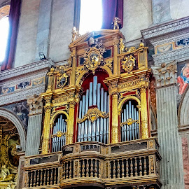 The organs by Tomek Karasek - Buildings & Architecture Architectural Detail ( church, rome, old church, organs, golden, building, interior, worship )