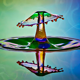 Liquid Mushroom by Chandra Irahadi - Abstract Water Drops & Splashes