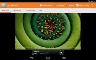 Screenshot of Cool Daily WallPaper