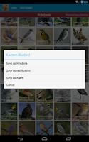 Screenshot of North American Birds Free