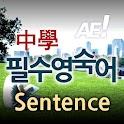 AE 중학필수영숙어_Sentence icon