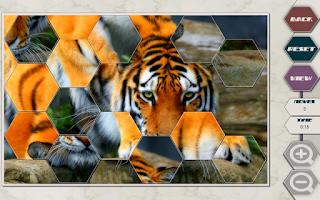 Screenshot of HexSaw - Wild Side