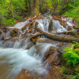 by Derrick Snider - Landscapes Waterscapes