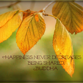 Share Your Happiness by Tammy Drombolis - Typography Captioned Photos