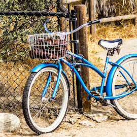 by Trish Lowe - Transportation Bicycles