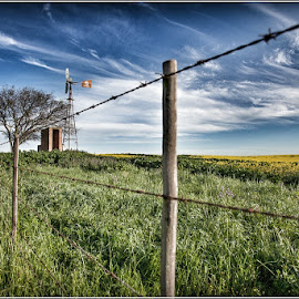 by Charmaine Pypers - Landscapes Prairies, Meadows & Fields