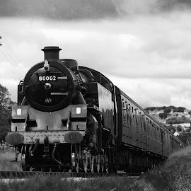 80002 by Darrell Evans - Transportation Trains ( b/w, old, railway, black and white, locomotive, rail, train, steam,  )