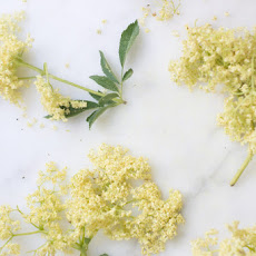 Elderflower and Coriander Vodka