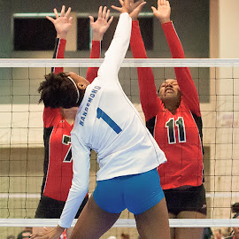 Volleyball by Brian Killough - Sports & Fitness Other Sports ( spike, volleyball, sports, block, net )