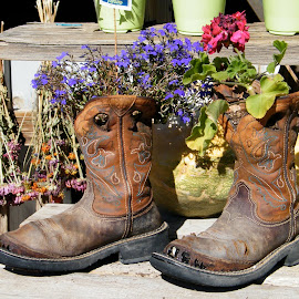 These boots are made for flowers by Donna Probasco - Novices Only Objects & Still Life ( artistic, object )