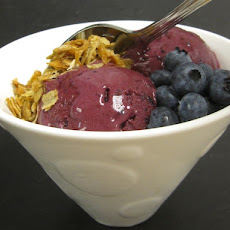 Blueberry Vanilla Bean Frozen Yogurt