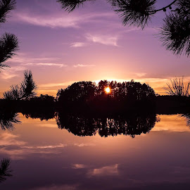 Through the Trees by Jackie Hartleben - Landscapes Sunsets & Sunrises ( water, reflection, nature, sunset, fall, trees, sunrise, landscape )