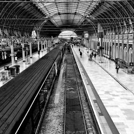 Paddington station by Philip McKibbin - Instagram & Mobile iPhone ( passengers, rails, carriage, station, coach, paddington, train, perspective, lines, tracks, commuters )
