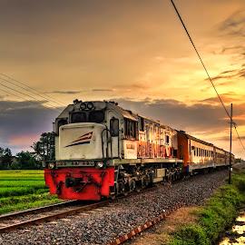 Indonesian Train by Randi Pratama M - Transportation Trains ( sunset, train )