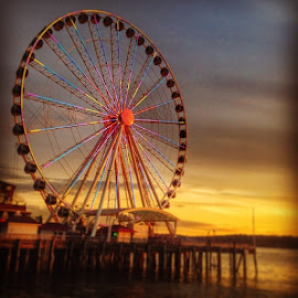 Circular Sunset  by Vanessa Castillo - Instagram & Mobile iPhone (  )