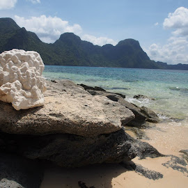 Nature 101 by Juan Carlo Cruz - Nature Up Close Rock & Stone