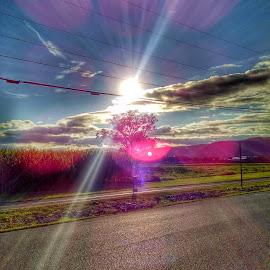 Dramatic Rays by Nathaniel VanOuse - Instagram & Mobile Android ( amazing, dramatic, pennsylvania, sunshine, flare )