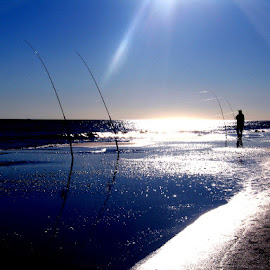 Surf Fishing by Kaye Petersen - Sports & Fitness Watersports ( gulf shores, silhouette, sunset, fishing, beach, surf,  )