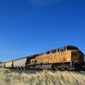 Good morning America, how are ya. by John Dodson - Transportation Trains