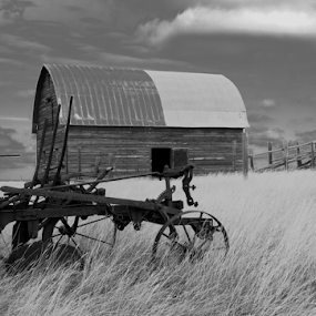 Old Barn & Plow by Brian Robinson - Black & White Objects & Still Life