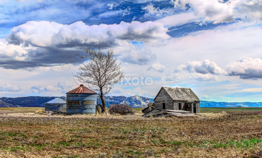 Saving The Past by Jim Moon - Buildings & Architecture Decaying & Abandoned ( abandoned cabin, usa, whisper river photography, farm land, fine art, pioneer home, cabin, homested, america, praire, jim moon, rocky mountain pass, old oregon trail, hdr, id, idaho, landscape )