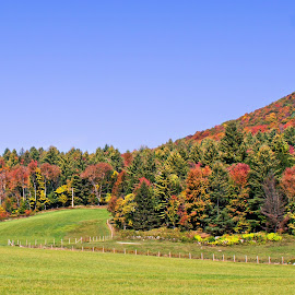 Vermont Fall by Sylvia Berman - Novices Only Landscapes (  )