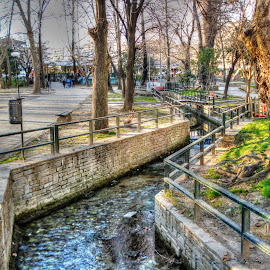 Park by Stratos Lales - City,  Street & Park  City Parks ( water, park, trees, bridge, flowers )