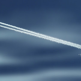 Sky Race by Jacky Quirke - Transportation Airplanes ( aviation, two, contrails, airplanes, blue, aircraft, white )