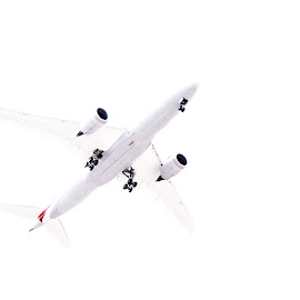 Thw White Plane by Paulo Peres - Transportation Airplanes ( passenger, fly, american, white, jet, airline )
