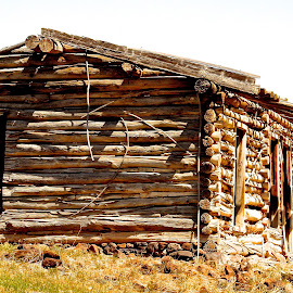 Old Homestead by Vern Tunnell - Buildings & Architecture Decaying & Abandoned
