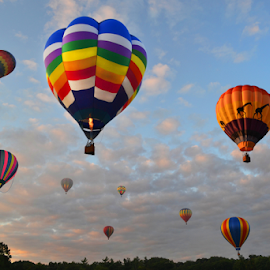 Many Balloons by Corinne Noon - Transportation Other ( sky, other, colors, transportation, balloons )