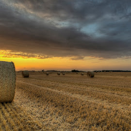 Harvest time by Kim  Schou - Landscapes Prairies, Meadows & Fields ( clouds, kim schou, hdr, sunset, harvest, lolland, fields )