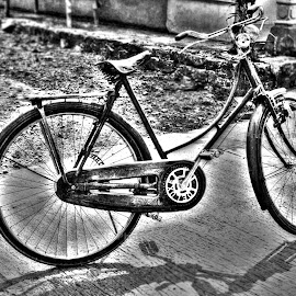 by Kevin Putra - Transportation Bicycles (  )