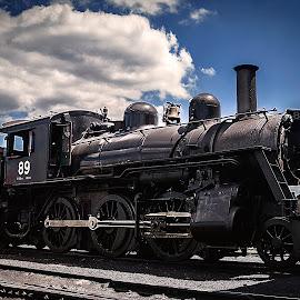 Blackdust by Nancy Senchak - Transportation Trains